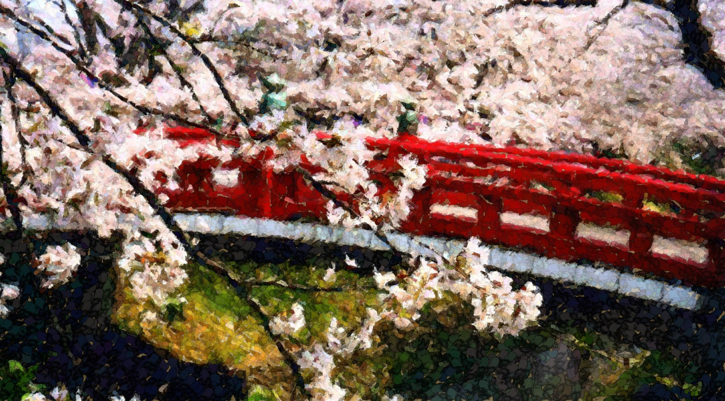 Japanese Bridge and Blossoms