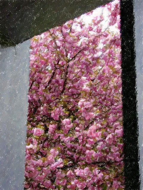Japan, Hakone, art museum, plum blossoms
