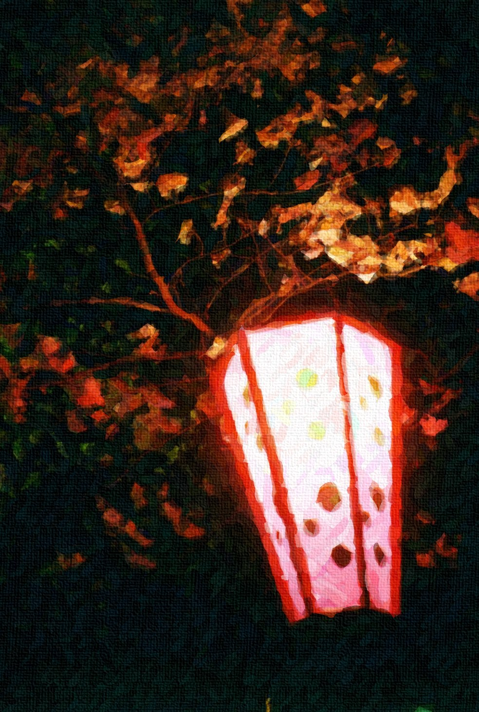 Japanese Cherry Blossoms and Paper Lantern